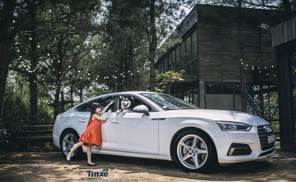 Audi A5 Sportback khác lạ trong ngôi nhà gỗ bên rừng - 10
