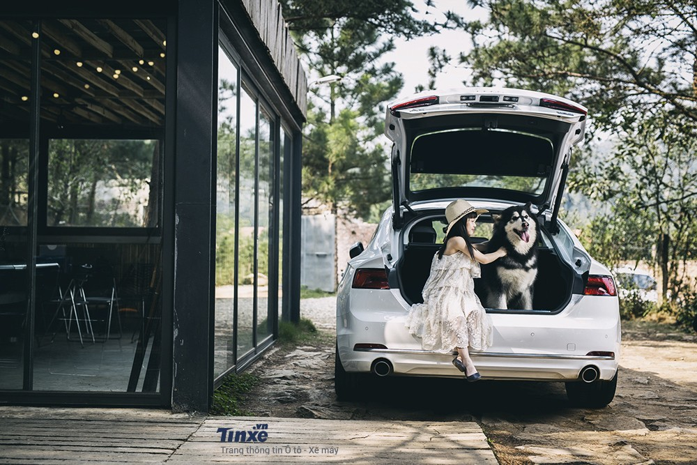 Audi A5 Sportback khác lạ trong ngôi nhà gỗ bên rừng - 7