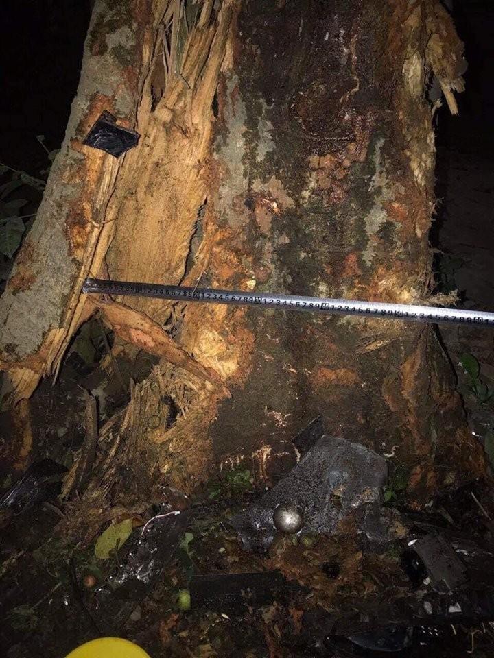 Một gốc cây mà chiếc Zotye Z8 đã đâm vào