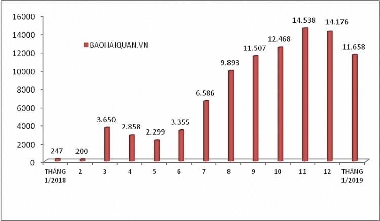 Lượng ô tô nhập khẩu trong năm 2018 và tháng 1/2019 (Biểu đồ: baohaiquan.vn)