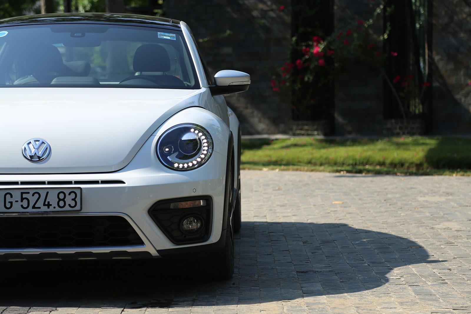 Đầu xe Volkswagen Beetle Dune