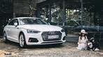 Audi A5 Sportback khác lạ trong ngôi nhà gỗ bên rừng - 4