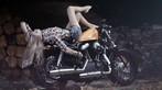 Cô nàng lả lơi bên Harley-Davidson - 7