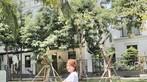 Á hậu áo dài Trịnh Thanh Phối duyên dáng bên chiếc Vespa ET hồng Hello Kitty - 2