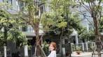 Á hậu áo dài Trịnh Thanh Phối duyên dáng bên chiếc Vespa ET hồng Hello Kitty - 3