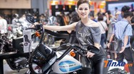 Video: Mãn nhãn với dàn người đẹp tại Vietnam AutoExpo 2019