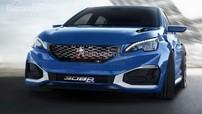 Peugeot hoãn tất cả các kế hoạch sản xuất xe hiệu suất cao