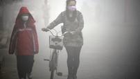 Đông cơ xăng và diesel sẽ bị cấm ở 7 quốc gia