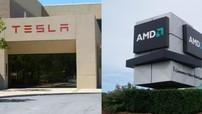 Tesla bắt tay với AMD sản xuất chip tự lái