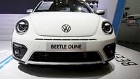 Thiết kế Volkswagen Beetle Dune 2017 với sức hút khó cưỡng