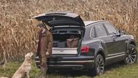 """Bentley Bentayga Field Sports Edition - """"Cỗ máy đi săn"""" cho giới thượng lưu"""