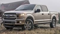 Ford là nhãn hiệu ô tô được tìm kiếm nhiều nhất trên Google tại Mỹ trong năm 2017