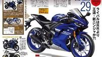 Xe côn tay Yamaha R25/R3 sẽ có thiết kế mới, phuộc USD