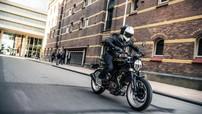 Husqvarna Svartpilen 401 sắp được bán ra, cạnh tranh với Ducati Scrambler Sixty2