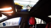 Đã đến lúc các hãng xe chú ý đến yếu tố an toàn của cửa sổ trời