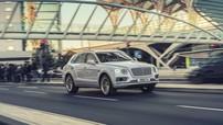 SUV siêu sang Bentley Bentayga Hybrid chính thức được vén màn