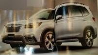 Diện kiến Subaru Forester 2019 - đối thủ của Honda CR-V và Mazda CX-5
