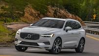 """Volvo XC60 xuất sắc giành giải thưởng """"Xe của năm 2018"""", qua mặt Range Rover Velar và Mazda CX-5"""