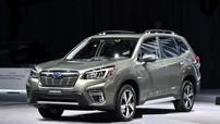 Subaru Forester 2019 ra mắt, đe dọa Honda CR-V và Toyota RAV4