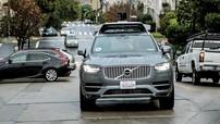 Vụ xe tự lái đâm chết người: Uber đã ngắt hệ thống chống va chạm