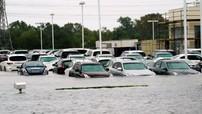 """Hàng ngàn xe ngập nước trong bão Harvey được """"tuồn"""" sang nước ngoài, có cả Đông Nam Á"""