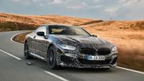 BMW 8 Series sẽ có phiên bản hiệu suất cao M850i xDrive với 523 mã lực