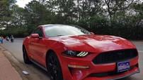 """Ford Mustang 2018 đầu tiên xuất hiện Việt Nam """"làm dâu"""" tại Lâm Đồng"""