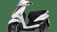 Cập nhật giá xe máy Yamaha Acruzo tháng 2/2019 hôm nay