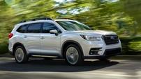 Không chỉ triệu hồi Ascent 2019, hãng Subaru còn đền luôn xe mới cho khách hàng