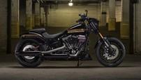 Sản phẩm cách tân nhất của Harley-Davidson hóa ra không phải là mô tô