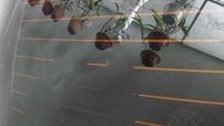 Có thể bạn chưa biết: Dán phim chống nóng sai sách có thể làm hỏng sấy kính ô tô