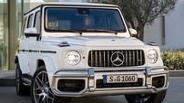 SUV hạng sang hiệu suất cao Mercedes-AMG G63 2019 được báo giá