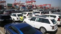 Đón mùa mua sắm cuối năm, ô tô nhập khẩu ồ ạt cập cảng Việt Nam