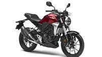 Honda CB300R 2019 theo phong cách Neo-Retro chốt giá 81,5 triệu đồng
