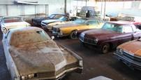 Bất ngờ tìm thấy hơn 80 chiếc xe cổ huyền thoại trong một nông trại