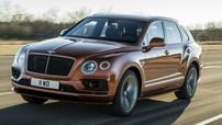 Bentley vén màn Bentayga Speed 2019 - SUV thương mại nhanh nhất thế giới