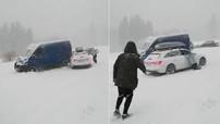 Người phụ nữ tưởng mình là siêu nhân, níu vào cửa sổ để ngăn chiếc Audi A4 Avant trôi dốc