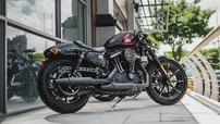 Đại gia Minh Nhựa tậu thêm Harley-Davidson Iron 883 Cafe Racer phiên bản giới hạn vào bộ sưu tập