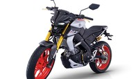 Yamaha MT-15 vừa được nhập về Việt Nam có những phụ kiện độ chính hãng nào