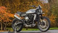Zongshen sẽ phát triển mẫu xe mô tô hoàn toàn mới, sử dụng khối động cơ 650cc từ Norton?