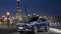 """Ford Trung Quốc bị phạt gần 600 tỷ đồng vì để đại lý """"thao túng"""" giá bán xe"""