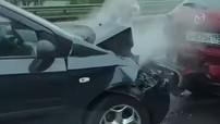 Chuyện lạ: Gia đình vịt gây nên tai nạn hỗn loạn trên đường cao tốc ở Nga