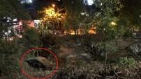 Thừa Thiên Huế: Xe sang Audi lao xuống vực bên đường, tài xế bị thương nhẹ