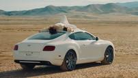 Sơn Tùng MT-P đưa Bentley Continental GT Speed vào MV mới cùng rapper Snoop Dogg