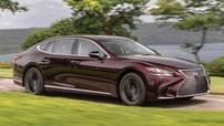 Sedan hạng sang Lexus LS500 2020 có phiên bản đặc biệt mới