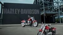 Chiếc Harley-Davidson Fat Boy dưới đây có giá siêu rẻ, chỉ 2,3 triệu đồng