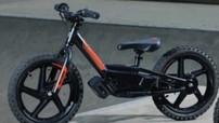 Đây là chiếc Harley-Davidson có giá thành rẻ nhất, chỉ 15 triệu đồng