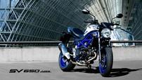 Suzuki SV650 - Naked bike sở hữu khung mắt cáo ra mắt phiên bản 2020