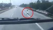 Video: Bé trai chạy qua cao tốc Thăng Long - Nội Bài và pha đánh lái xuất thần của tài xế xe khách