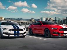 """Ford giới thiệu bản nâng cấp của """"rắn hổ mang"""" Mustang Shelby GT350 2019"""